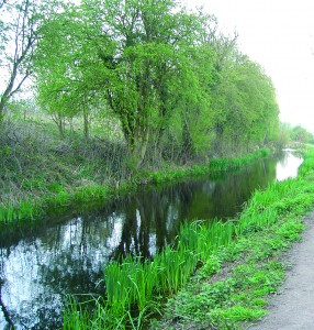 The Shrewsbury and Newport Canal